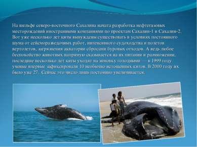На шельфе северо-восточного Сахалина начата разработка нефтегазовых месторожд...