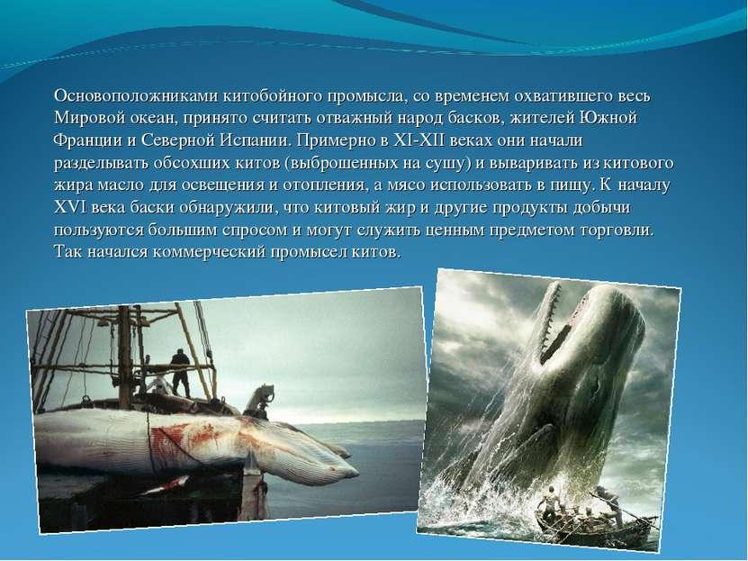 Основоположниками китобойного промысла, со временем охватившего весь Мировой ...