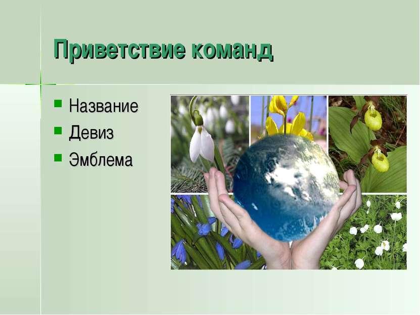девизы и названия команд по экологии