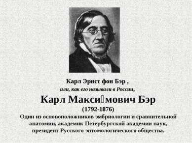 Карл Эрнст фон Бэр , или, как его называли в России, Карл Макси мович Бэр (17...