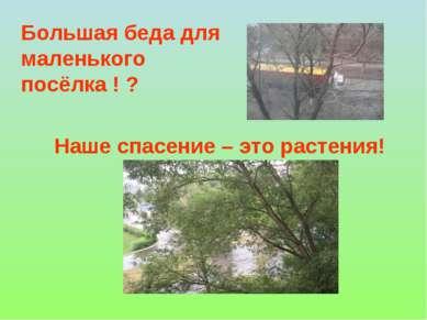 Наше спасение – это растения! Большая беда для маленького посёлка ! ?