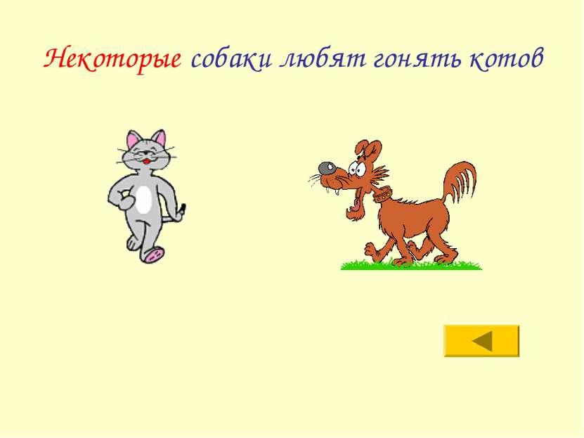 Некоторые собаки любят гонять котов