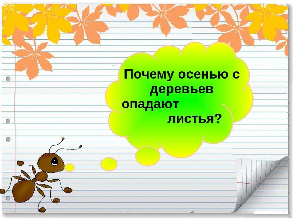 Почему осенью с деревьев опадают листья?