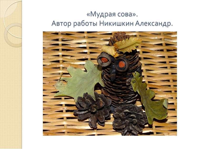 «Мудрая сова». Автор работы Никишкин Александр.