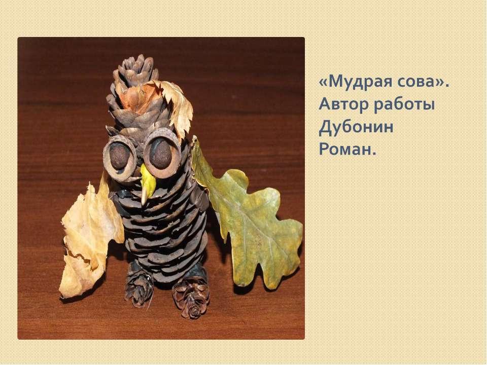 «Мудрая сова». Автор работы Дубонин Роман.