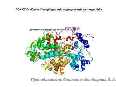 Органические вещества клетки БЕЛКИ Преподаватель биологии: Болдырева Л. А. ГО...