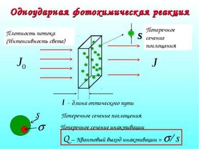 Одноударная фотохимическая реакция Q – Квантовый выход инактивации = s/ s