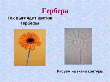 Гербера Так выглядит цветок герберы Рисуем на ткани контуры