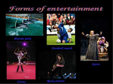 Marine park Football match Opera Circus Rock concert