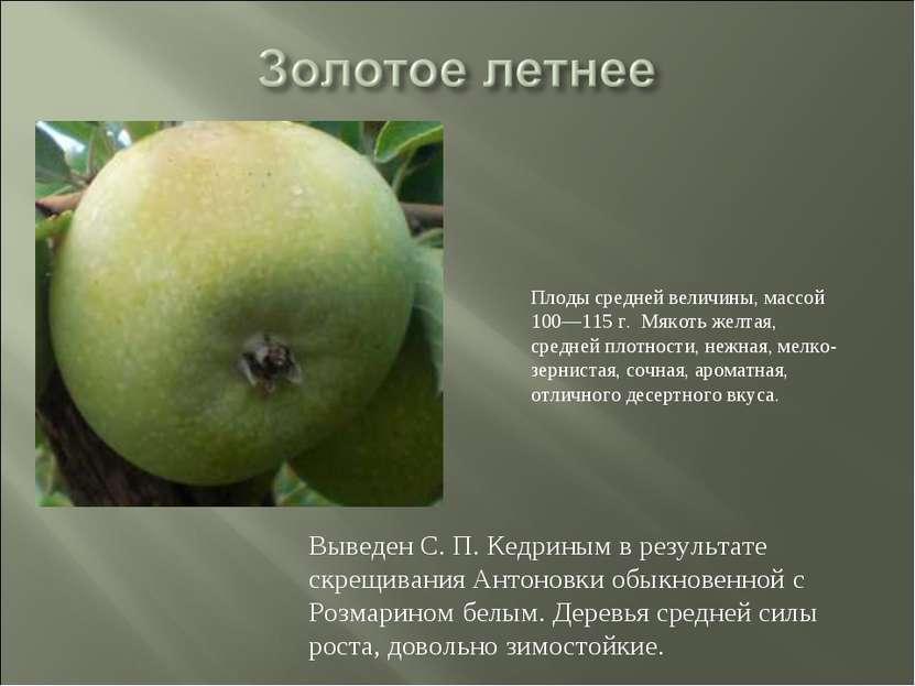 Выведен С. П. Кедриным в результате скрещивания Антоновки обыкновенной с Розм...