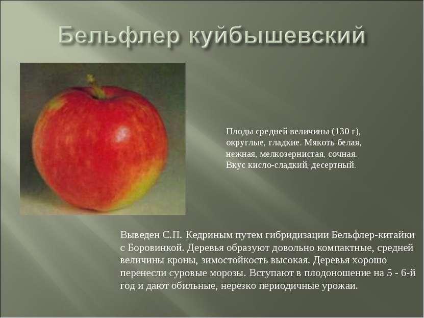 Выведен С.П. Кедриным путем гибридизации Бельфлер-китайки с Боровинкой. Дерев...
