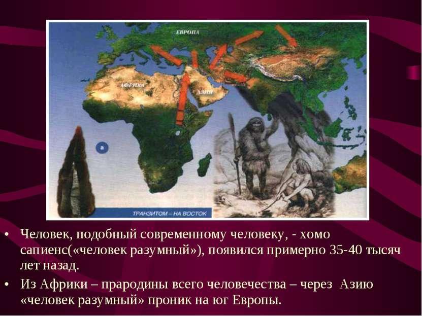 Человек, подобный современному человеку, - хомо сапиенс(«человек разумный»), ...