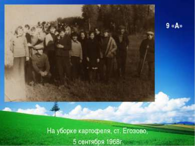 9 «А» На уборке картофеля, ст. Егозово, 5 сентября 1968г. Company Logo LOGO