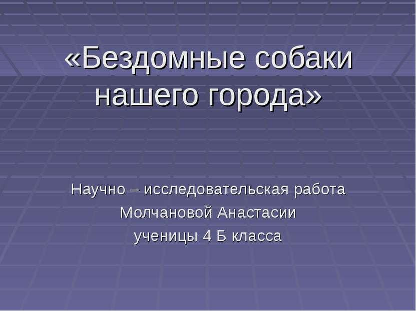 «Бездомные собаки нашего города» Научно – исследовательская работа Молчановой...
