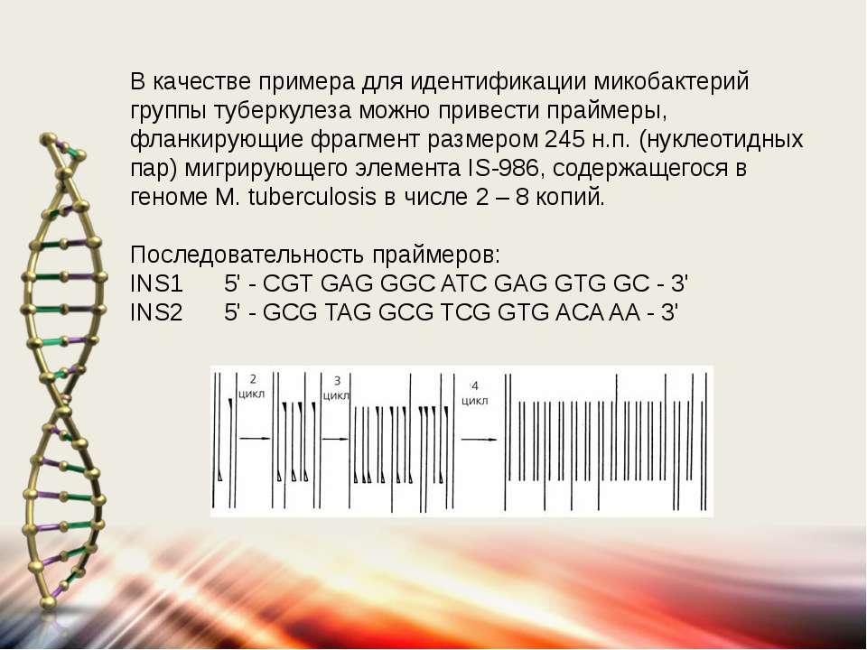 В качестве примера для идентификации микобактерий группы туберкулеза можно пр...