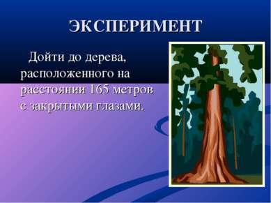 ЭКСПЕРИМЕНТ Дойти до дерева, расположенного на расстоянии 165 метров с закрыт...