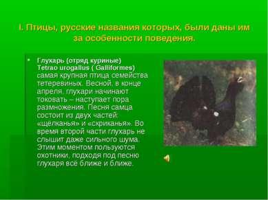 I. Птицы, русские названия которых, были даны им за особенности поведения. Гл...