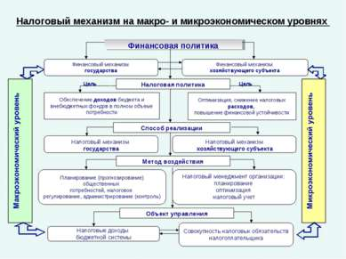 Налоговый механизм на макро- и микроэкономическом уровнях