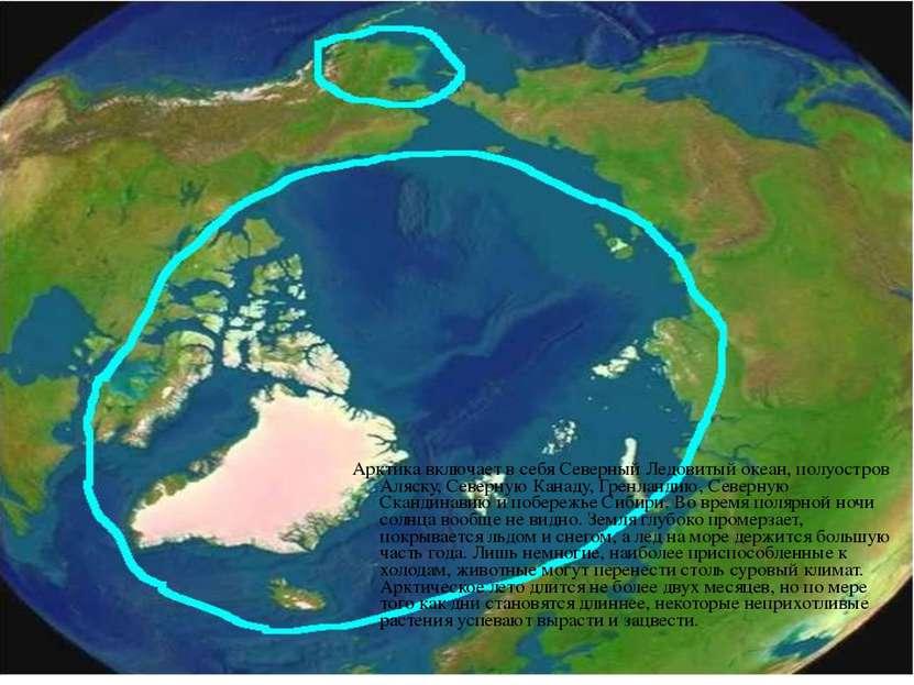 Арктика включает в себя Северный Ледовитый океан, полуостров Аляску, Северную...