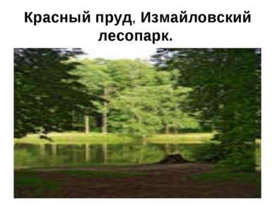 Красный пруд, Измайловский лесопарк.