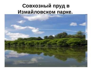Совхозный пруд в Измайловском парке.
