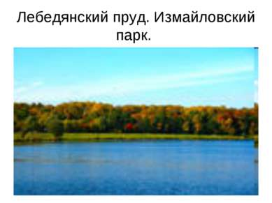 Лебедянский пруд. Измайловский парк.