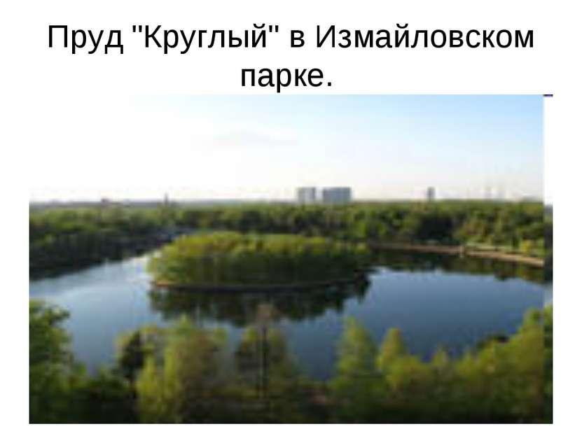 """Пруд """"Круглый"""" в Измайловском парке."""