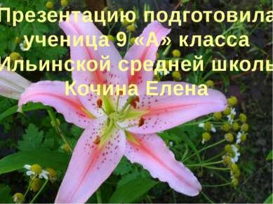 Презентацию подготовила ученица 9 «А» класса Ильинской средней школы Кочина Е...