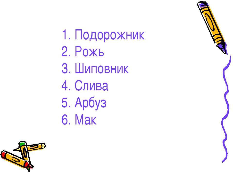 1. Подорожник 2. Рожь 3. Шиповник 4. Слива 5. Арбуз 6. Мак