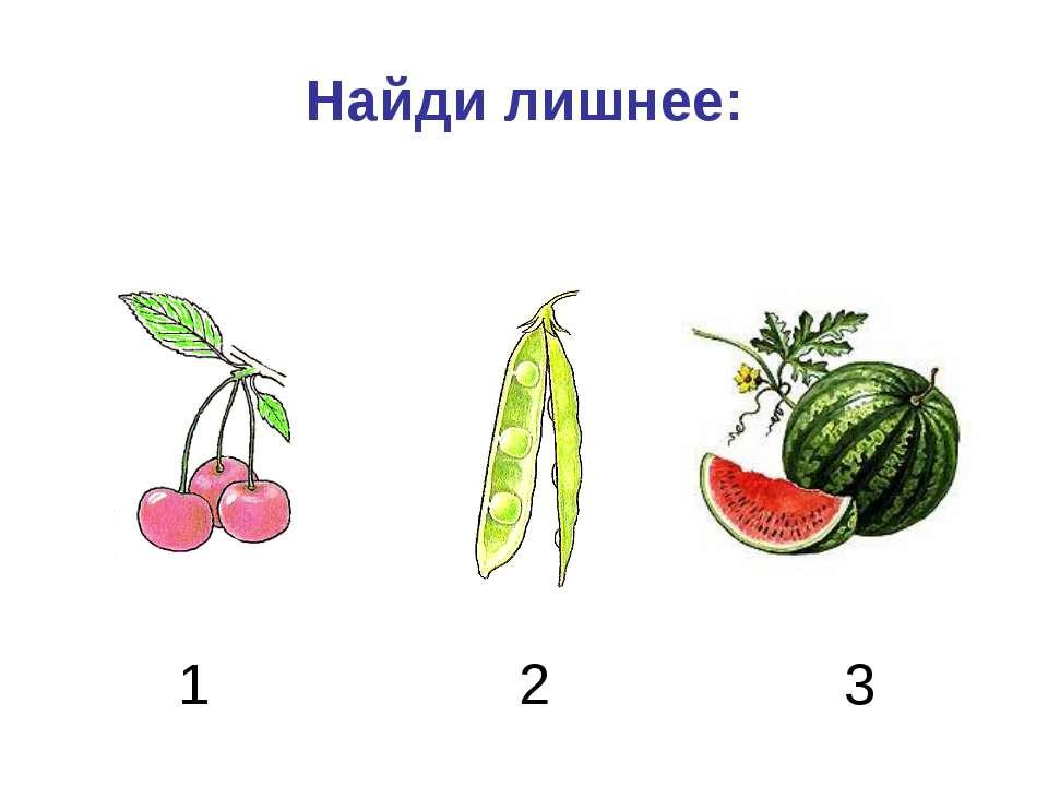 Найди лишнее: 1 2 3