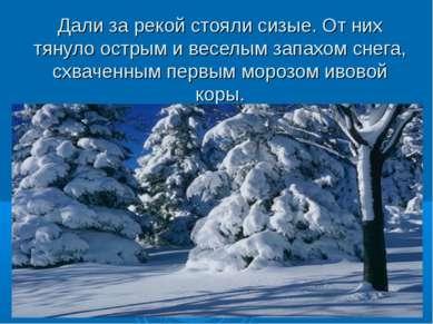 Дали за рекой стояли сизые. Отних тянуло острым ивеселым запахом снега, схв...