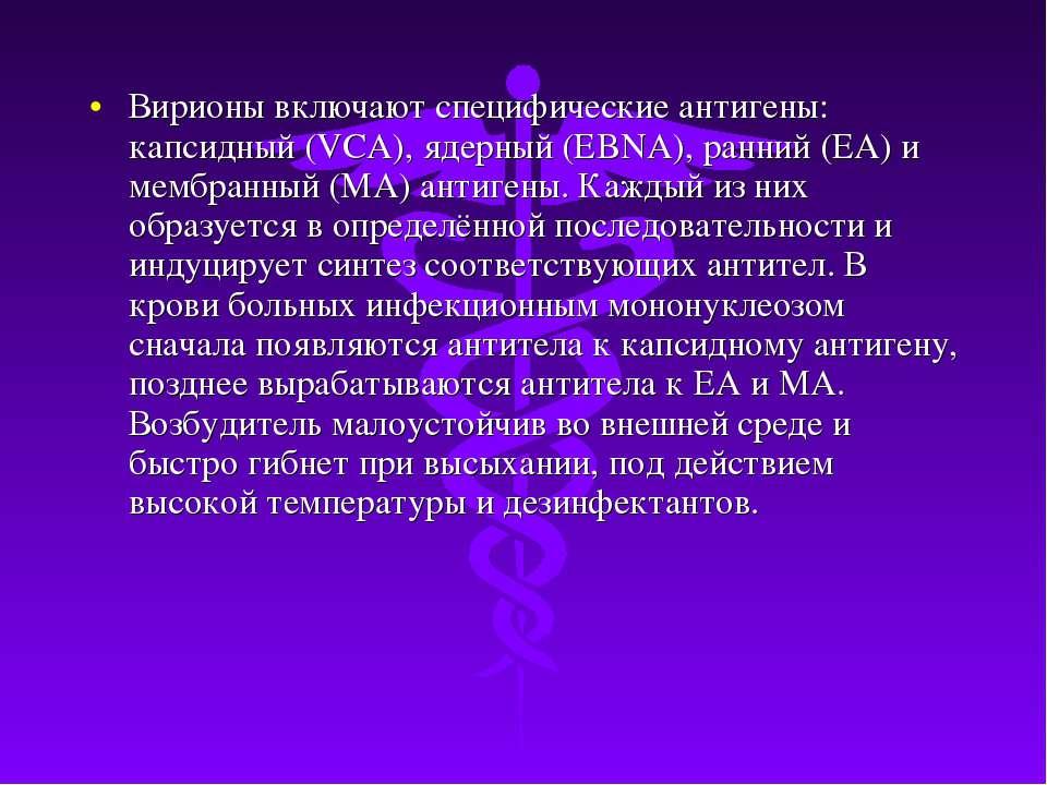 Вирионы включают специфические антигены: капсидный (VCA), ядерный (EBNA), ран...