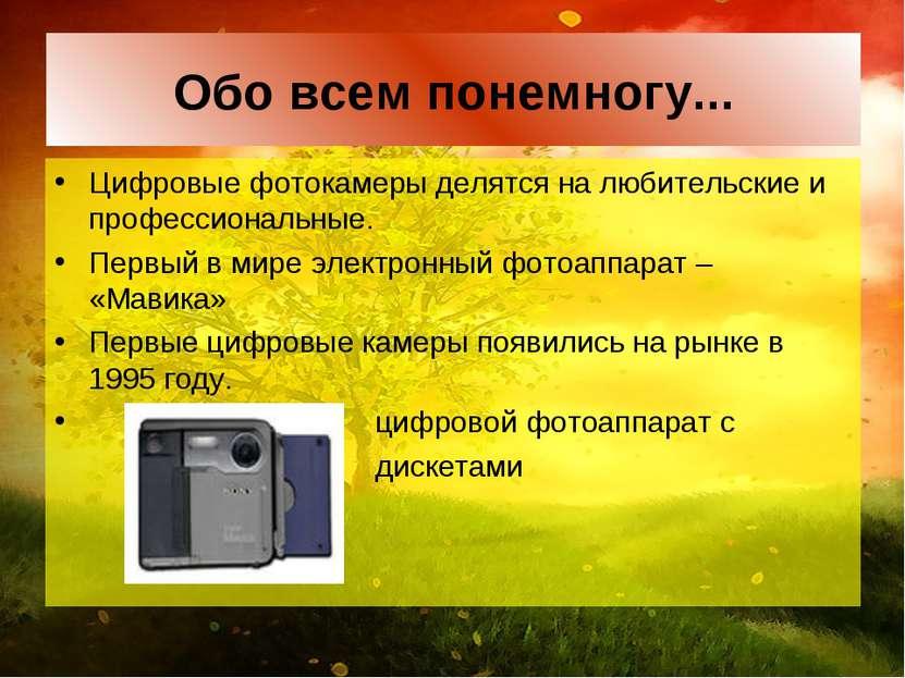 Обо всем понемногу... Цифровые фотокамеры делятся на любительские и профессио...