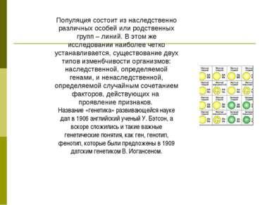 Популяция состоит из наследственно различных особей или родственных групп – л...