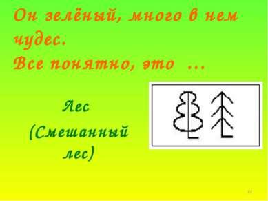 * Он зелёный, много в нем чудес. Все понятно, это … Лес (Смешанный лес)