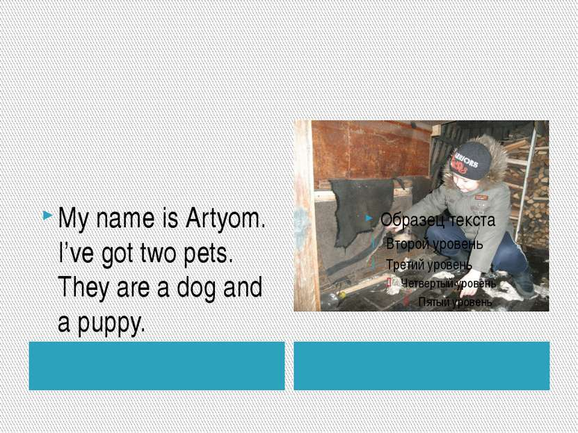 My name is Artyom. I've got two pets. They are a dog and a puppy. ""