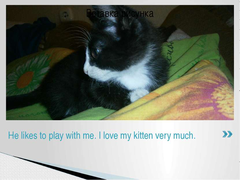 He likes to play with me. I love my kitten very much.