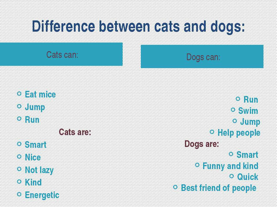 Difference between cats and dogs: Cats can: Dogs can: Eat mice Jump Run Cats ...
