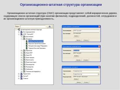 Организационно-штатная структура организации Организационно-штатная структура...