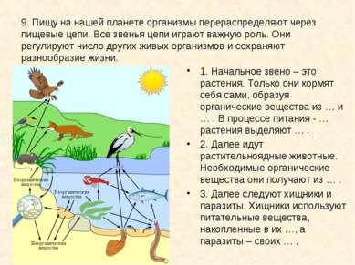 9. Пищу на нашей планете организмы перераспределяют через пищевые цепи. Все з...