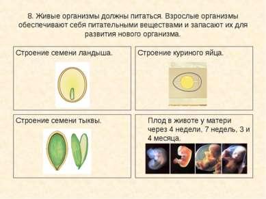 8. Живые организмы должны питаться. Взрослые организмы обеспечивают себя пита...
