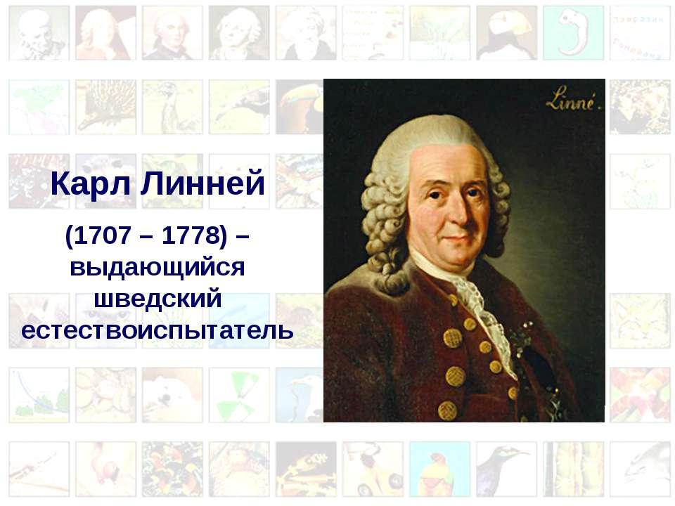 Карл Линней (1707 – 1778) – выдающийся шведский естествоиспытатель