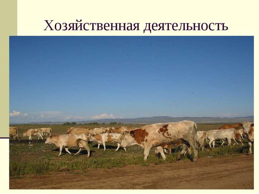 Хозяйственная деятельность Астраханская полупустыня