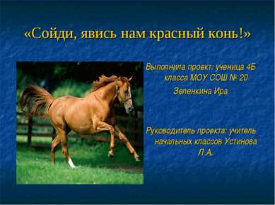 «Сойди, явись нам красный конь!» Выполнила проект: ученица 4Б класса МОУ СОШ ...