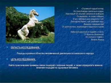 ОБЛАСТЬ ИССЛЕДОВАНИЯ: Лошадь в разных областях человеческой деятельности хака...