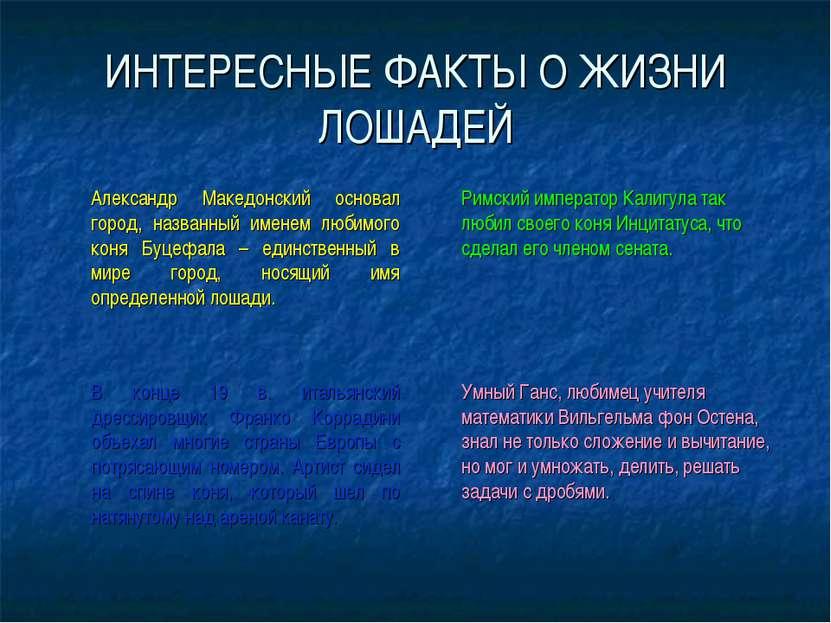 ИНТЕРЕСНЫЕ ФАКТЫ О ЖИЗНИ ЛОШАДЕЙ Александр Македонский основал город, названн...