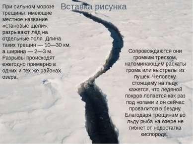 При сильном морозе трещины, имеющие местное название «становые щели», разрыва...