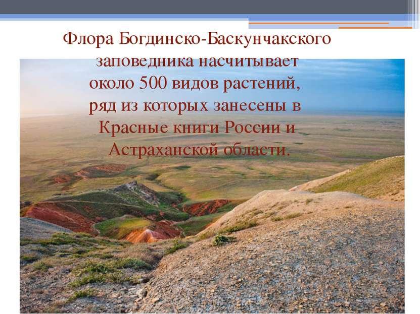 Флора Богдинско-Баскунчакского заповедника насчитывает около 500 видов растен...