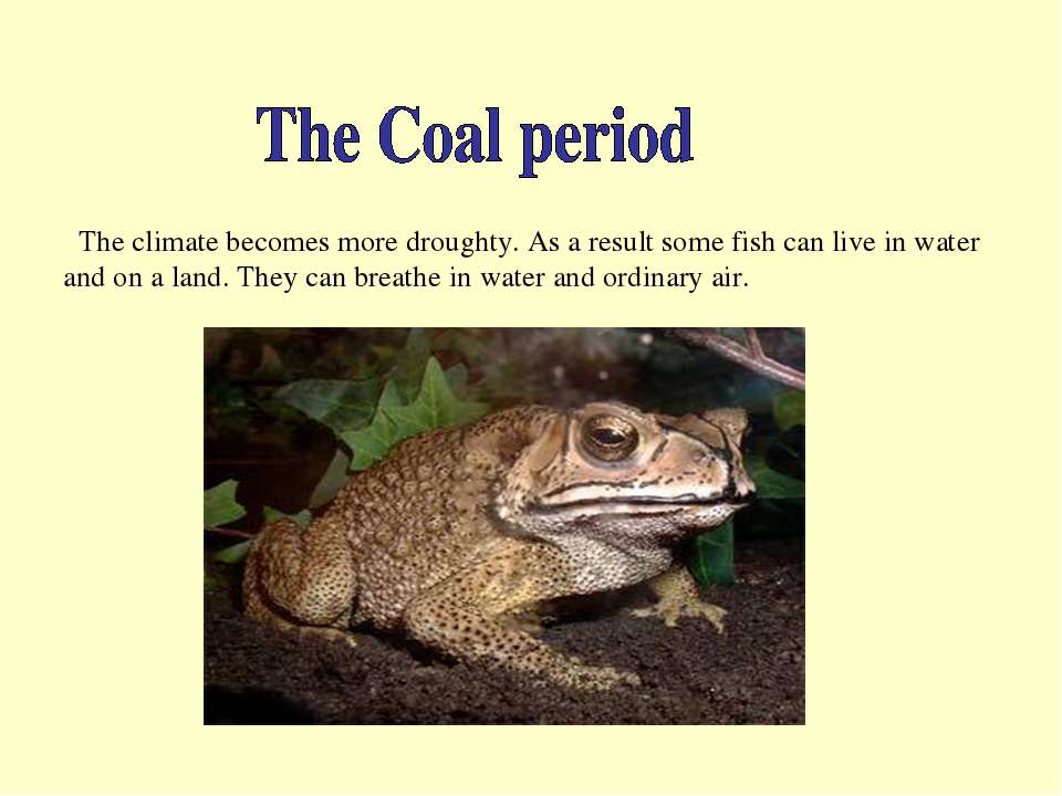The climate becomes more droughty. As a result some fish can live in water an...