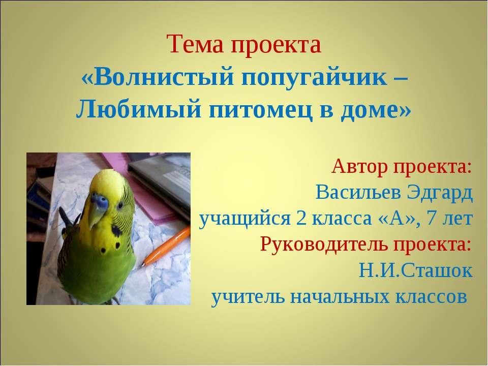 Тема проекта «Волнистый попугайчик – Любимый питомец в доме» Автор проекта: В...